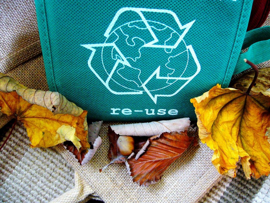 re-use bag with leaves