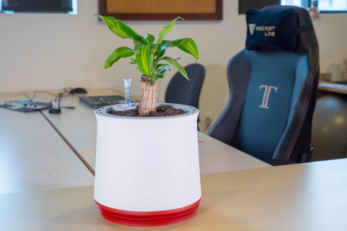 Airy Natural Air Purifier Review A Smart Planter For The Home And Office